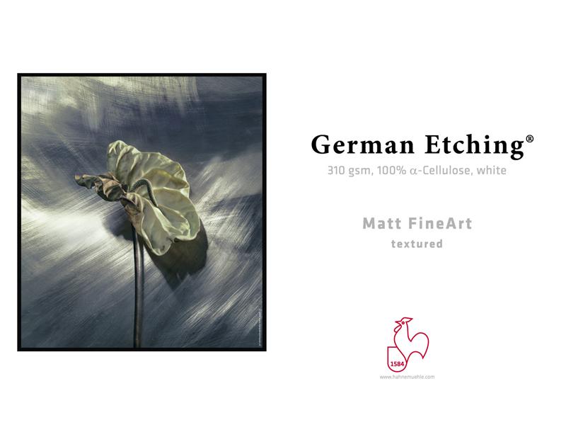 Carta Hahnemühle Carta Fine Art Fine Art German Etching  310 g. 17