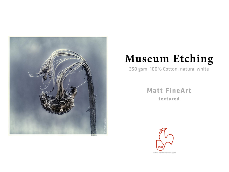 Carta Hahnemühle Carta Fine Art Fine Art Museum Etching 350 g. A4