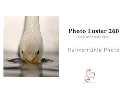 Carta Hahnemühle Carta Fotografica Photo Luster 260 g. 24