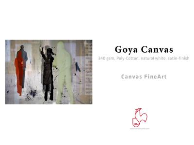 Carta Hahnemühle Carta Fine Art Fine Art Goya Canvas 340 g. 44